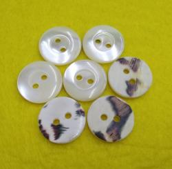 Shinning Blue Trocas Shell Shirt Button 12mm
