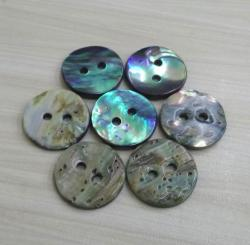 High Brightness New Zealand Blue Abalone Shell Button with Rainbow Effect